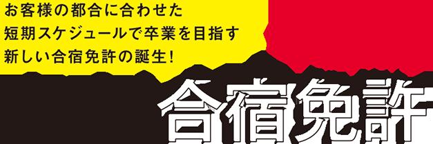 オリジナル合宿プラン 東京合宿免許 安近短楽のお得な合宿プランです