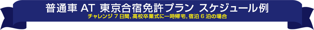 普通車 AT モデルスケジュール 東京合宿免許プラン