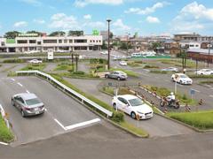 松戸自動車教習所スクールバス